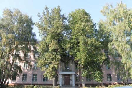 Узловский городской суд