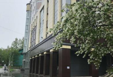 Сыктывкарский городской суд
